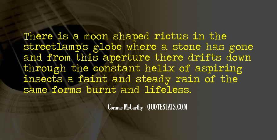 Streetlamp's Quotes #1609728