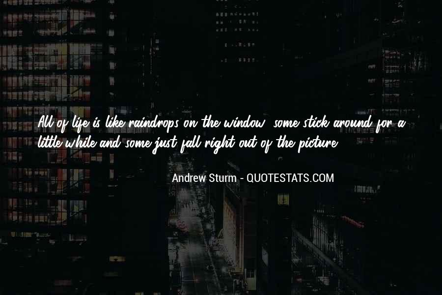 Sturm's Quotes #656327