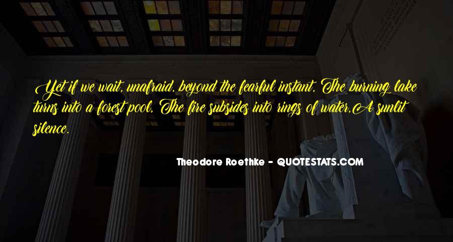Sunlit Quotes #1109758