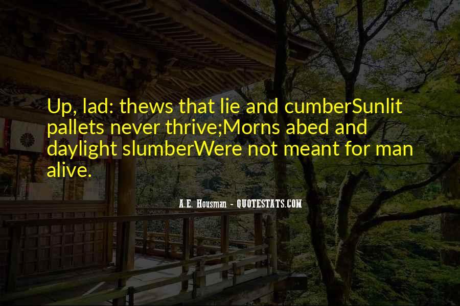 Sunlit Quotes #385770