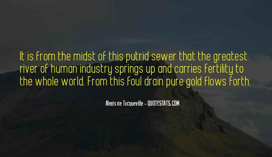 Tocqueville's Quotes #33829