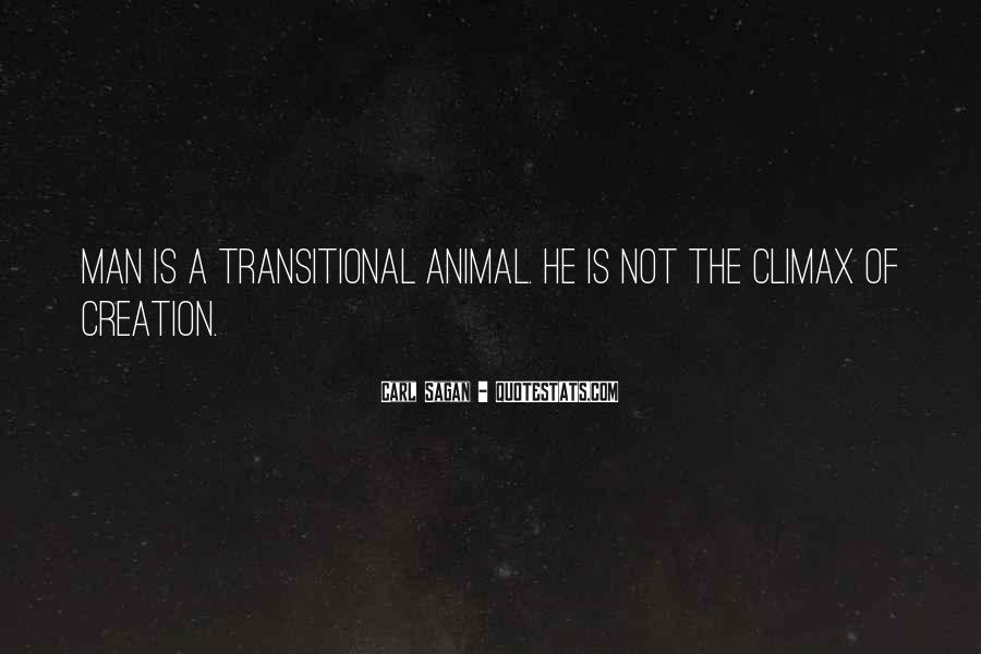 Transitional Quotes #1752767