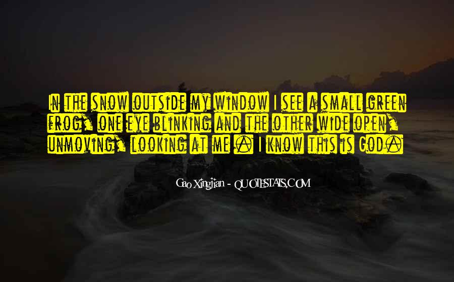 Quotes About Outside Looking In #420217