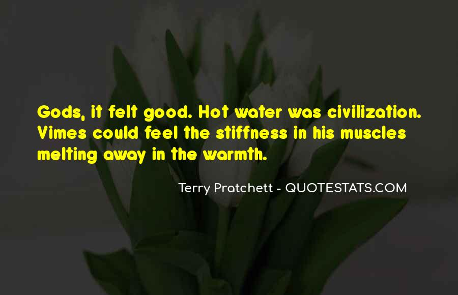 Vimes's Quotes #285701
