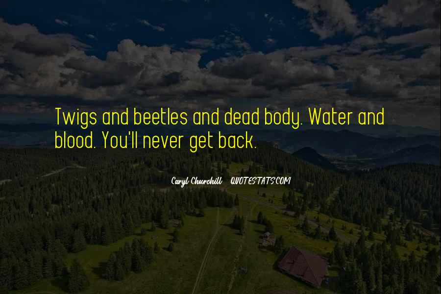 Water'll Quotes #72322