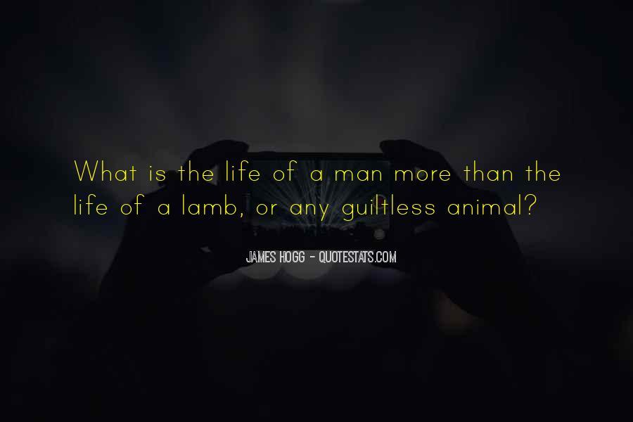 Wildernesse Quotes #475306