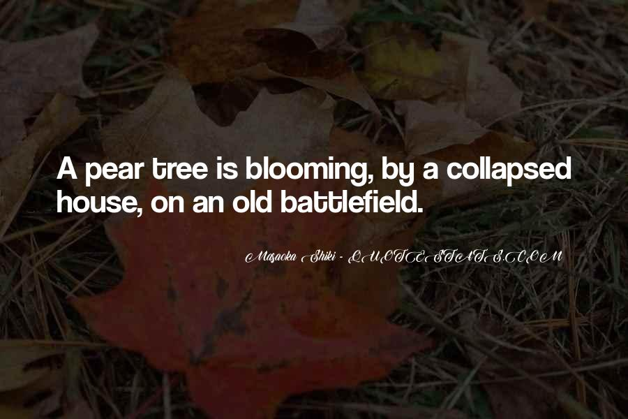 Quotes About A Tree House #887080