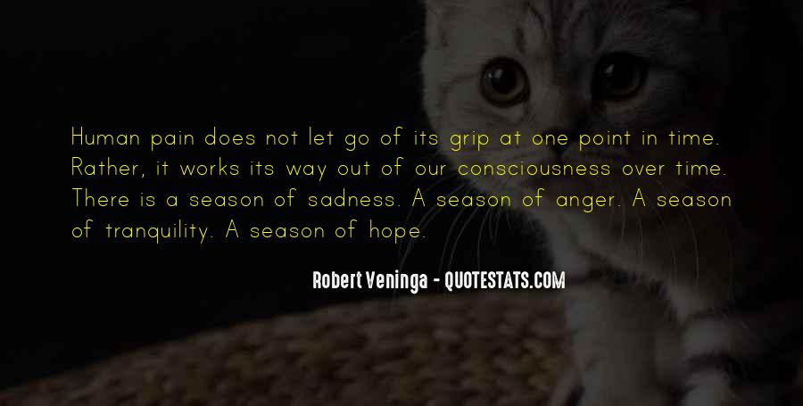 Sayings About Letting Anger Go #1764473