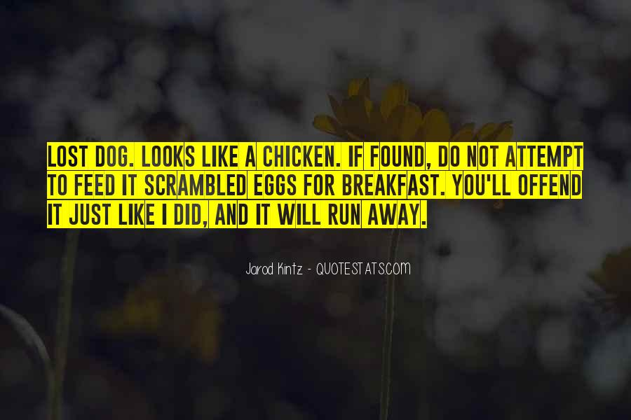Sayings About Chicken Feed #1317494