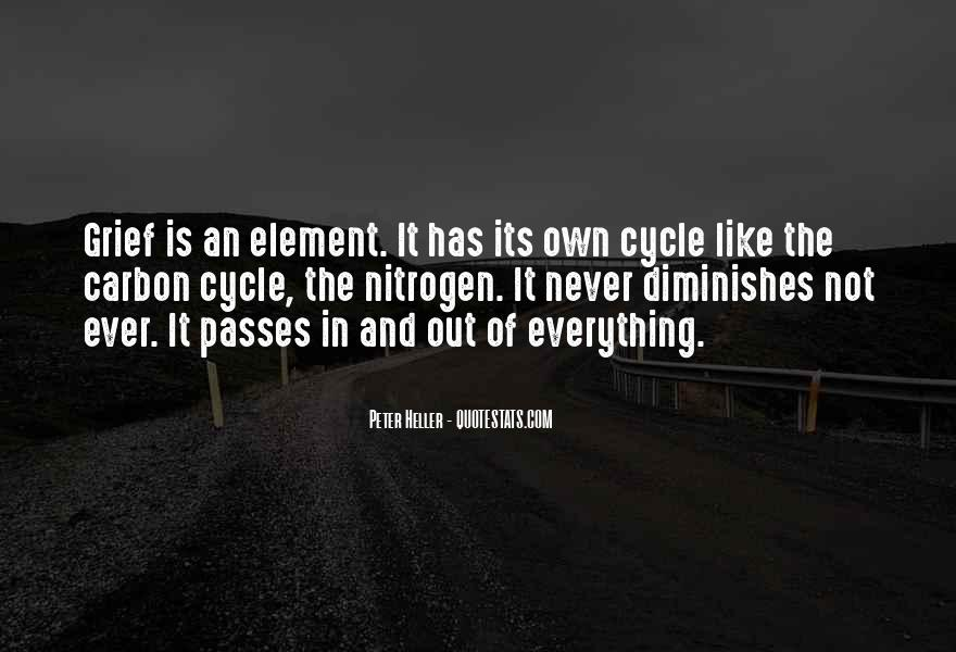 Sayings About The Cycle Of Life #39151
