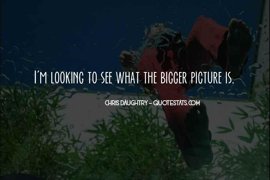 Sayings About Looking At The Bigger Picture #139533