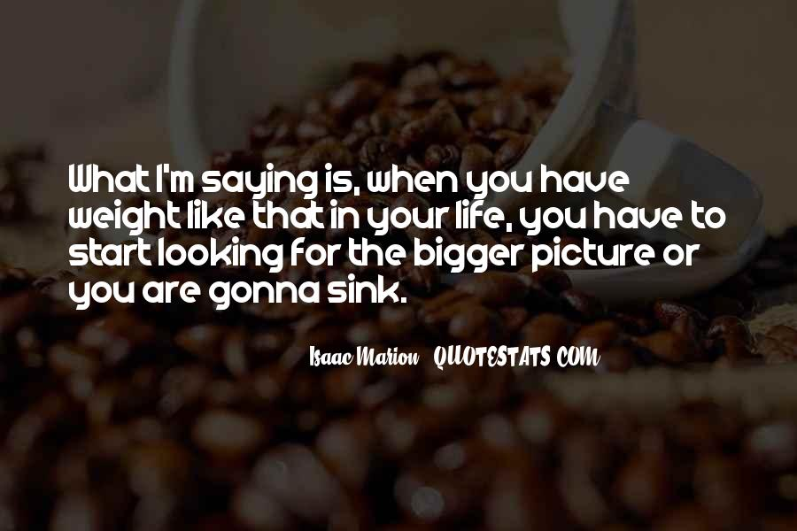 Sayings About Looking At The Bigger Picture #404761