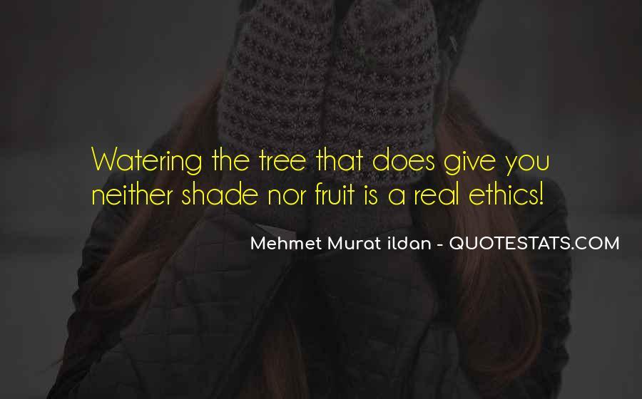 Giving Tree Sayings #503368
