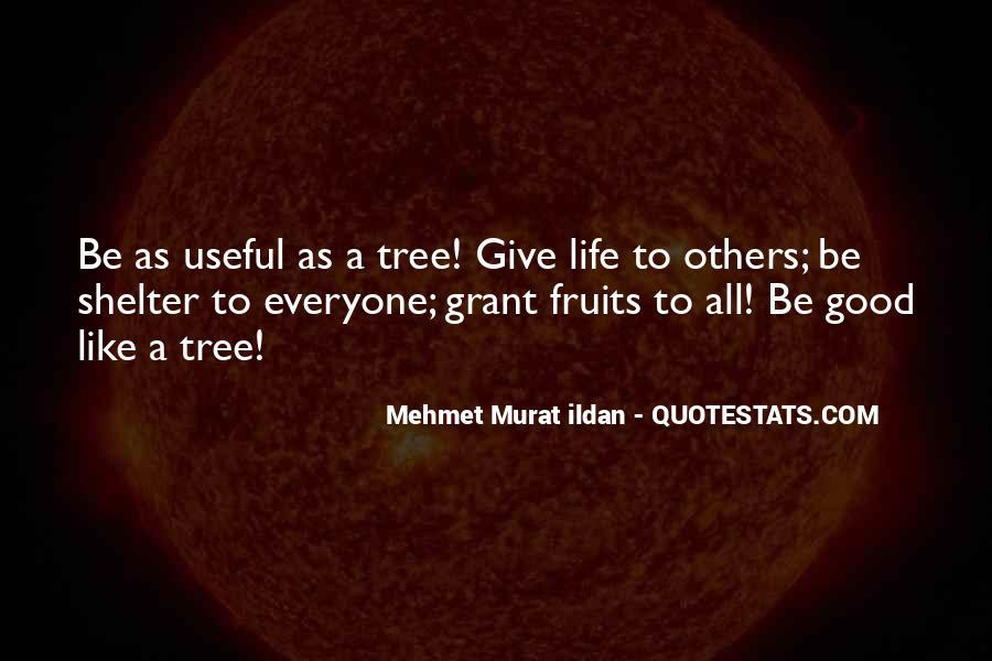 Giving Tree Sayings #867067