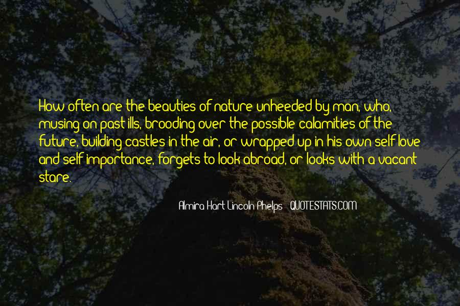 Quotes About Castles In The Air #1171556