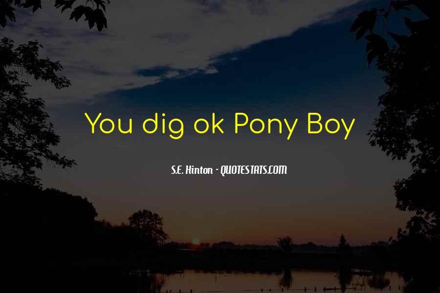 Pony Boy Sayings #1822854