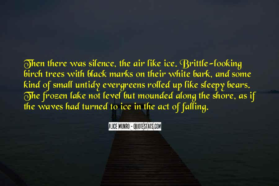 Quotes About Waves On The Shore #103213