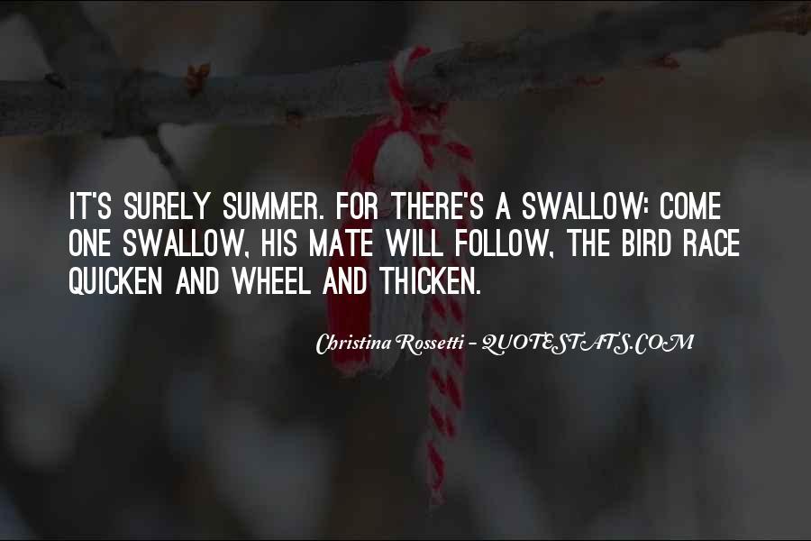 Swallow Bird Sayings #1208491