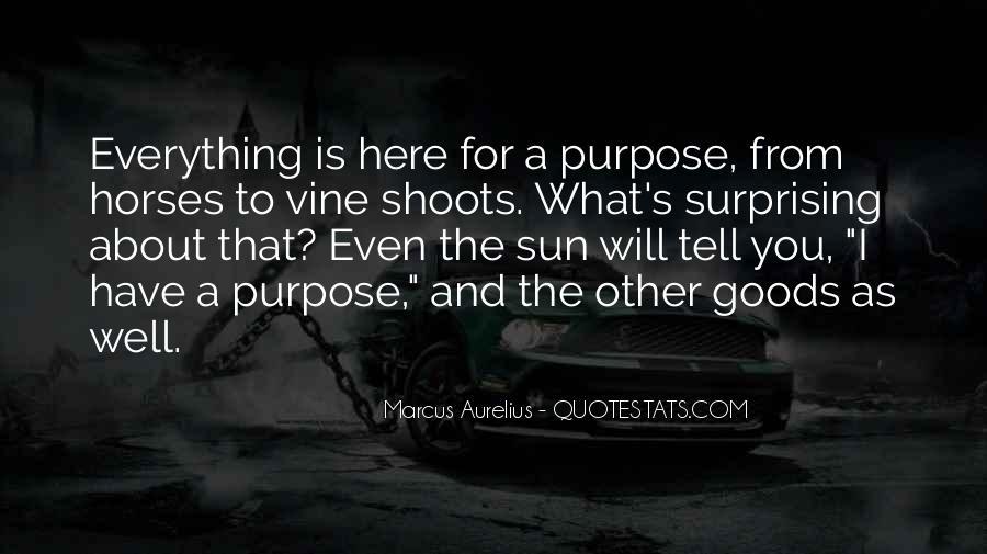 Best Vines Sayings #351233