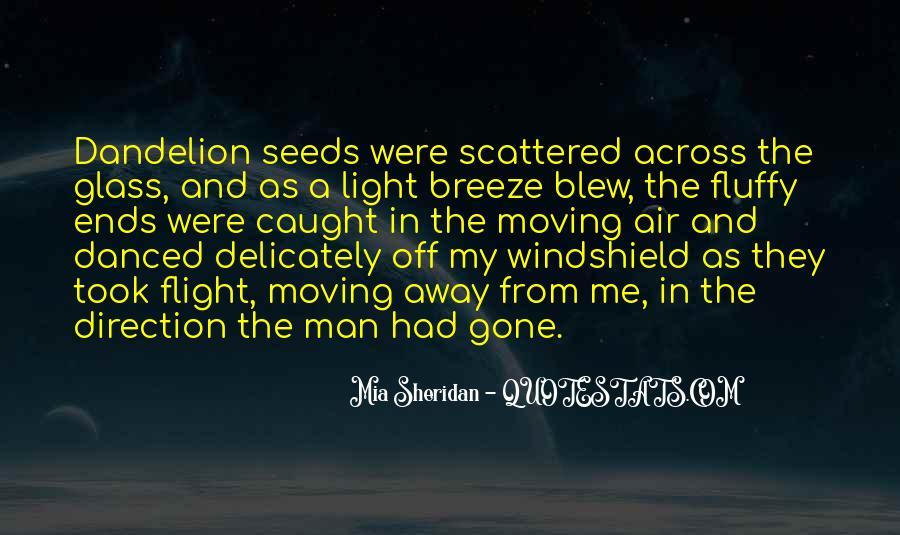 Rzr Windshield Sayings #1111215