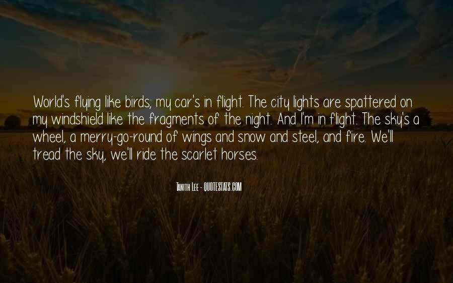 Rzr Windshield Sayings #1428152