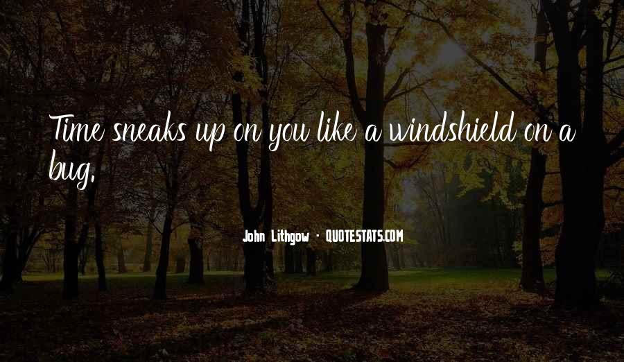 Rzr Windshield Sayings #289532