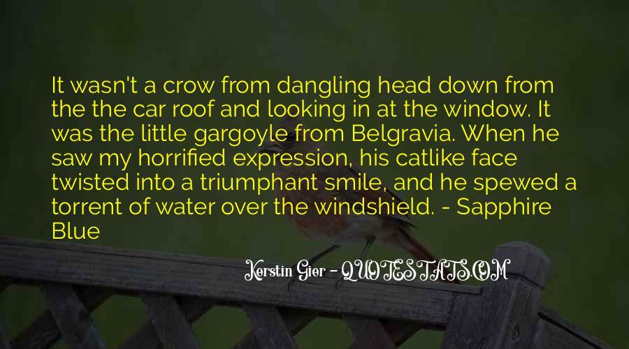 Rzr Windshield Sayings #402725