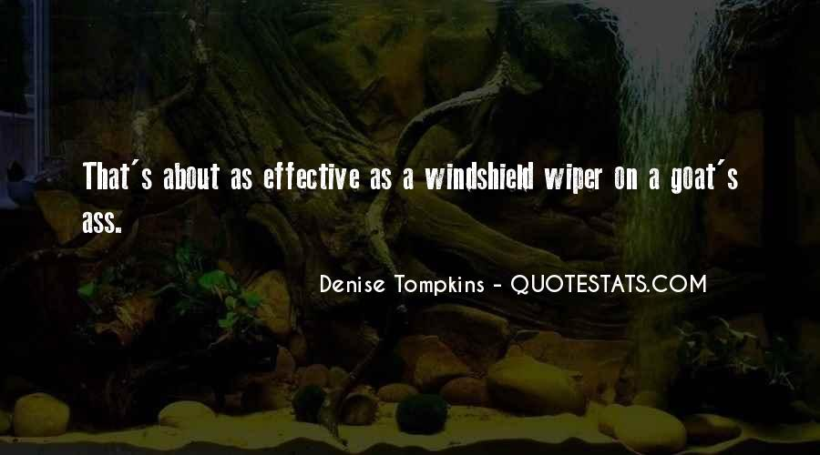 Rzr Windshield Sayings #435296