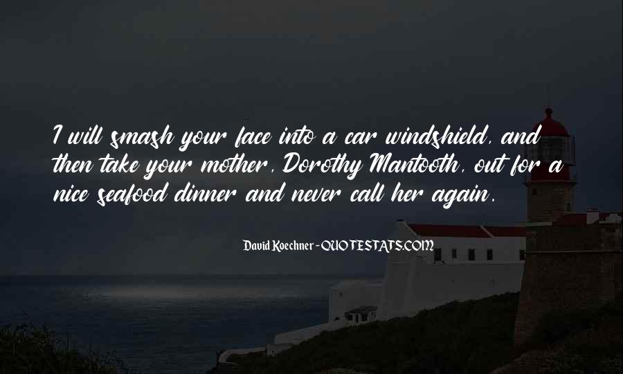 Rzr Windshield Sayings #491992