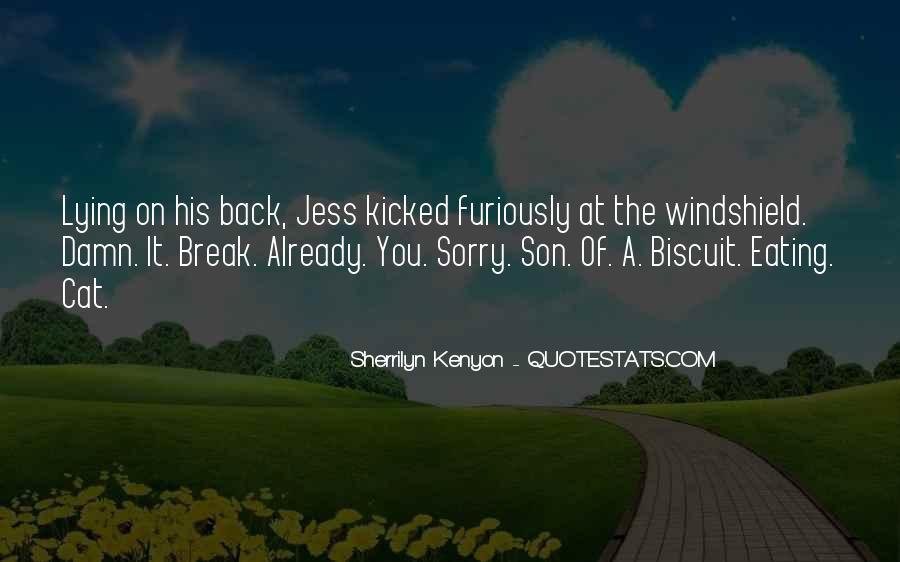 Rzr Windshield Sayings #705308