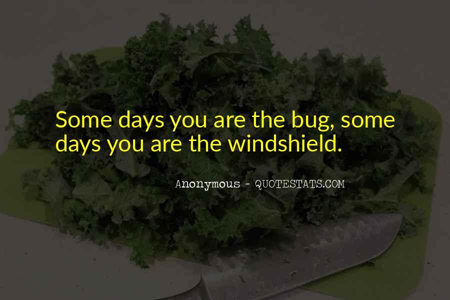 Rzr Windshield Sayings #935621
