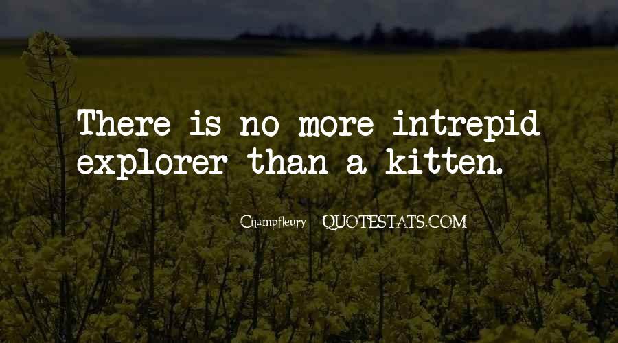 Cat And Kitten Sayings #139400