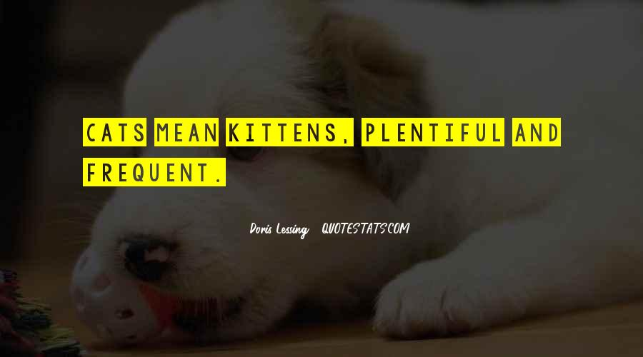 Cat And Kitten Sayings #1444553
