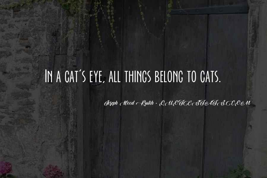 Cat And Kitten Sayings #1826200