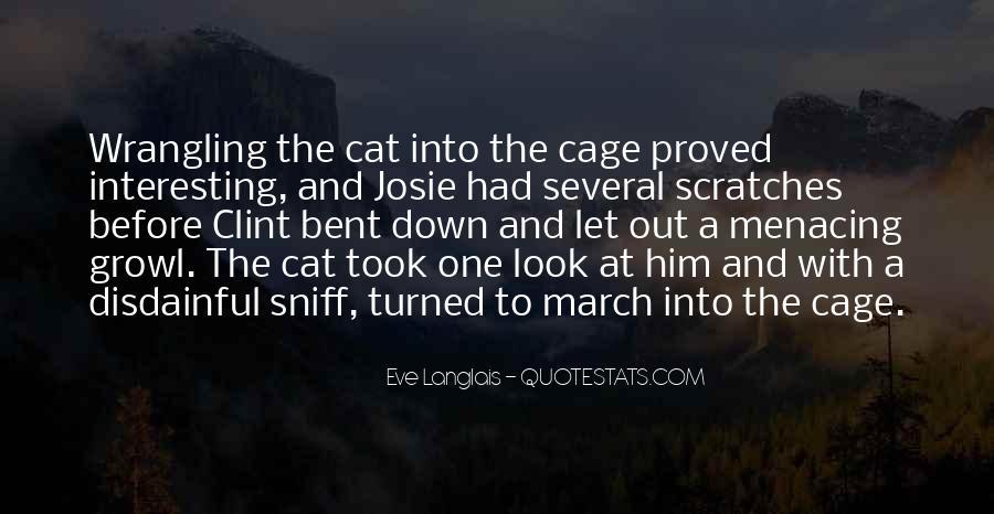 Cat And Kitten Sayings #1850528