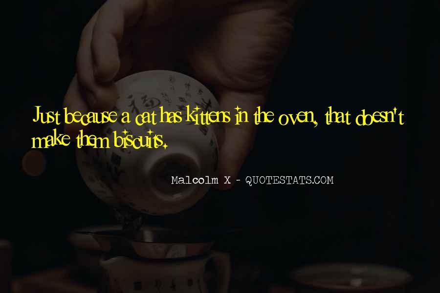 Cat And Kitten Sayings #840239