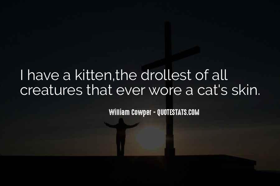 Cat And Kitten Sayings #85780