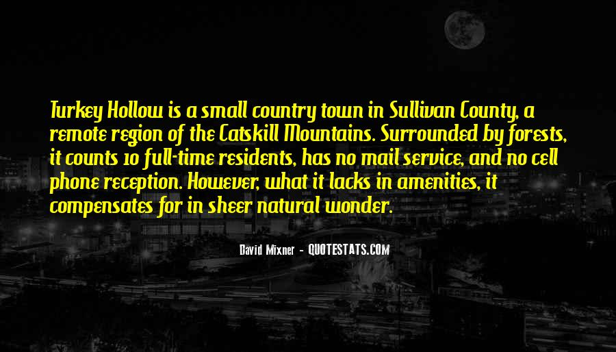 Country Town Sayings #693001