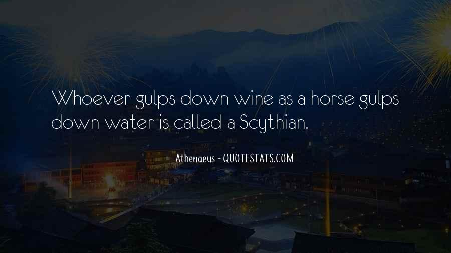 Wine And Horse Sayings #1363350