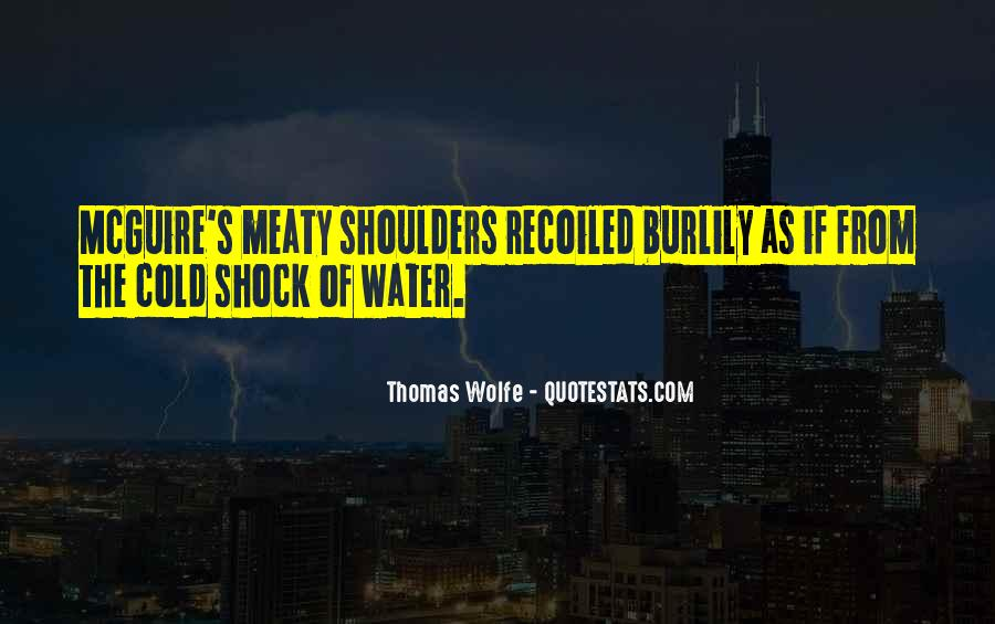 Quotes About Cold Shoulders #237286