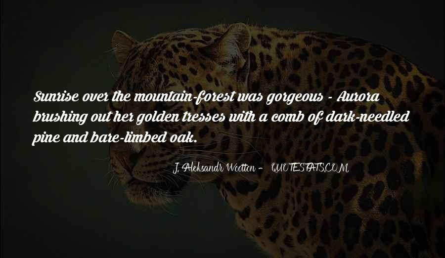 Quotes About Hiking Mountains #674359