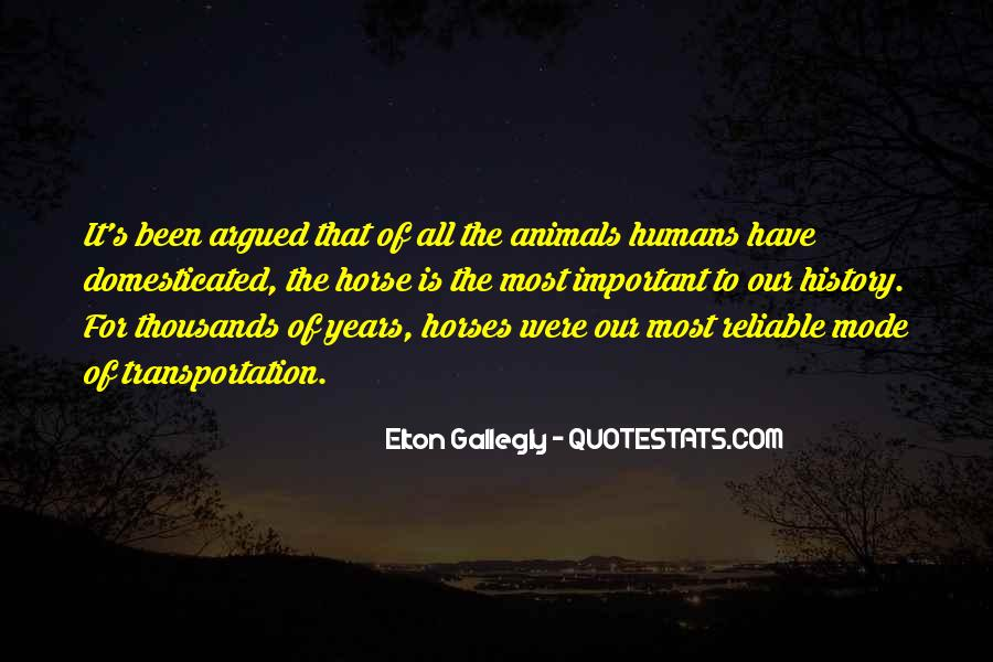 Quotes About Horses And Humans #1660997