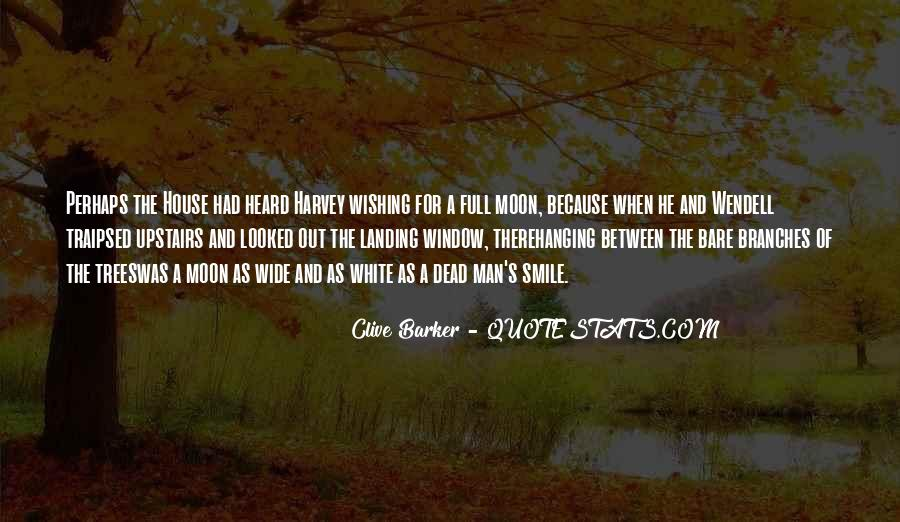 Quotes About Hanging The Moon #156622
