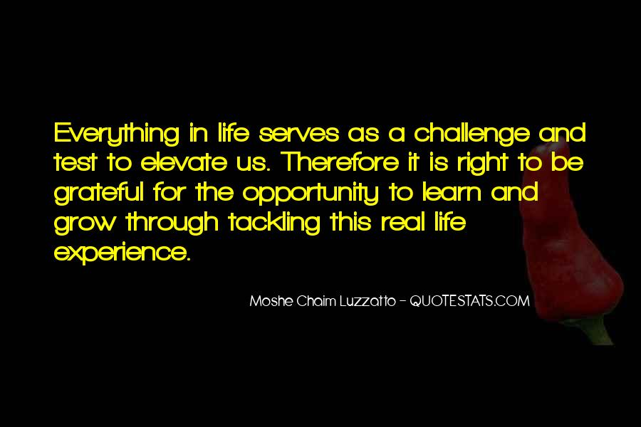 Quotes About Opportunity In Life #17896