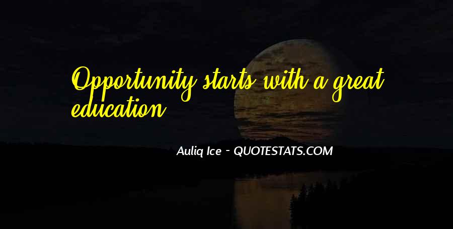 Quotes About Opportunity In Life #354414