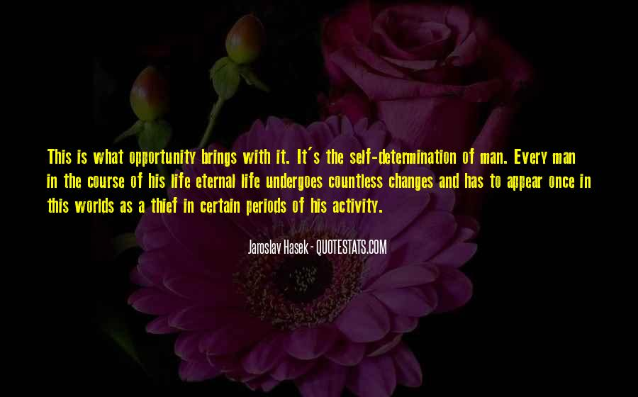 Quotes About Opportunity In Life #90104