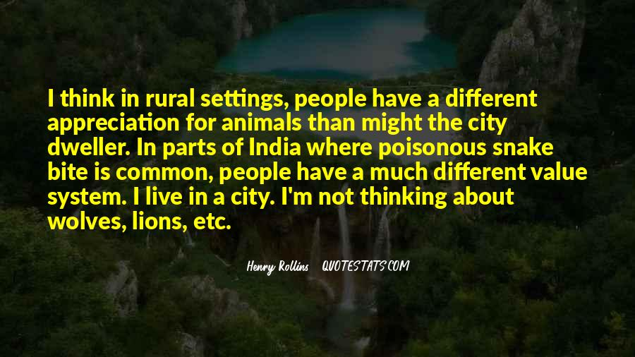 Quotes About Settings #42551