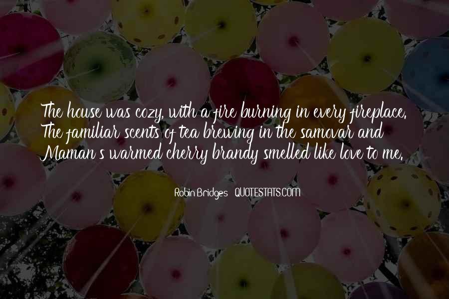 Quotes About Burning Your Bridges #1671909
