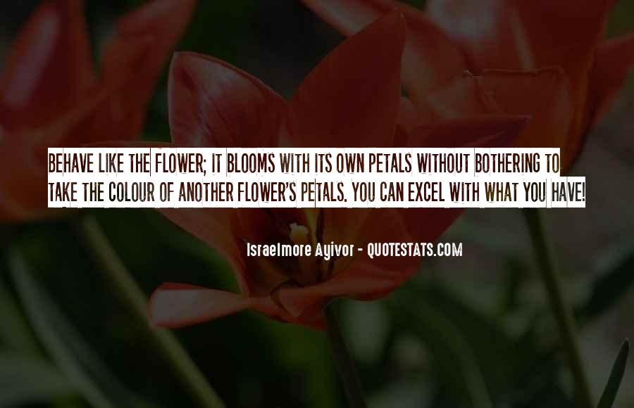 Quotes About Rose Petals #1015461