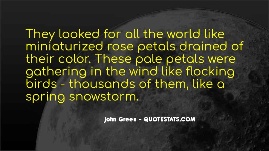 Quotes About Rose Petals #173446